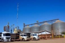 Investimentos do Estado no Agro refletem em indicadores que mostram MS entre os maiores produtores de grãos