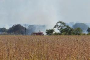 Incêndio atinge plantação e deixa bairro totalmente coberto por fumaça