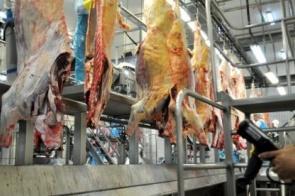 MS faturou US$ 107,8 milhões com exportação de carne bovina no bimestre