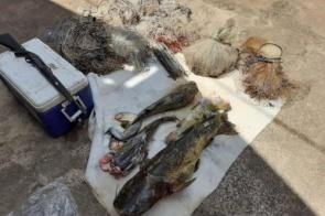 Quatro homens são autuados em R$ 10,4 mil por pesca predatória em MS
