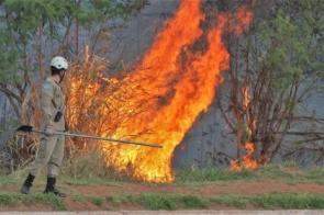 Bombeiros fazem alerta para aumento de 133% na quantidade de incêndios