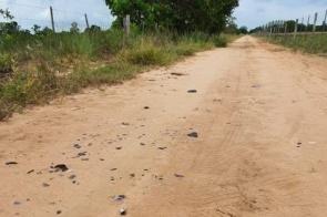 Motociclista morre ao colidir em touro em cidade do interior