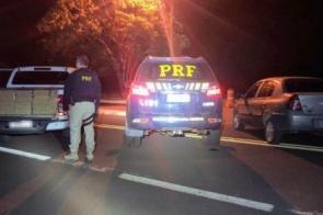 PRF apreende 1.526 quilos de maconha e recupera caminhonete furtada