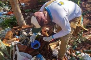 Dourados investiga segunda morte por dengue e confirma mais de 900 casos da doença