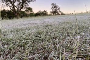 Frio provoca geada em 7 cidades e madrugada com sensação de -4ºC