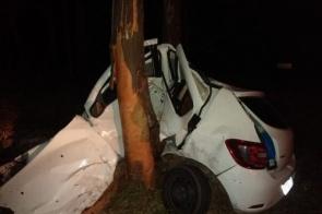 Em fuga com quase meia tonelada de maconha, traficante destrói carro ao atingir árvore