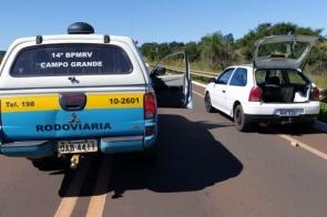 Droga que seria levada para Santa Catarina é apreendida em ação policial