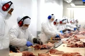 Exportações industriais de MS recuperam queda causada por Covid-19 e fecham em alta de 5%