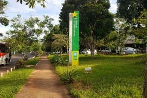 Mato Grosso do Sul ultrapassa mil casos confirmados do novo coronavírus