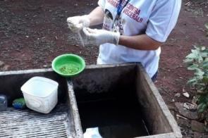 Após terceira morte, Dourados notifica 70 suspeitas e confirma 22 casos de dengue