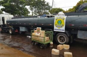 Ação conjunta apreende 5 toneladas de maconha em rodovia estadual