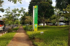 Secretaria de Saúde confirma 49º óbito por coronavírus em Mato Grosso do Sul