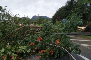 """Ciclone Bomba"" deixa sul do Brasil e segue para oceano"