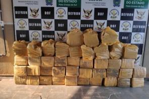 Polícia descobre entreposto e apreende mais de 1t de maconha em Dourados