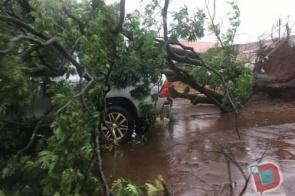 Temporal causa estragos em Itaporã e derruba até árvore sobre camionete no centro
