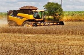 Valor da produção agropecuária de Mato Grosso do Sul chega ao recorde de R$ 70,9 bilhões