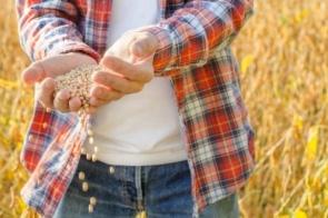 Valor da produção agropecuária de 2020 é o maior dos últimos 32 anos