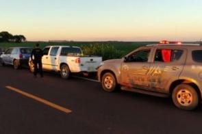 Camionete que seguia para Dourados é apreendida com mais de uma tonelada de maconha
