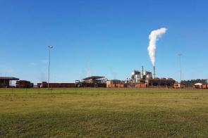 Multinacional vê 'infelicidade' do BNDES por revisão de decisão de leilão da São Fernando