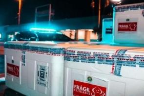 Governo do Estado distribui aos municípios 8.190 doses da vacina da Pfizer