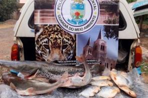 Pescador é flagrado com mais de 70 exemplares de peixe em MS