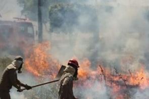 Estiagem: Mato Grosso do Sul reforça as ações para prevenir incêndios