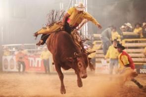 II Rodeio Itaporã Fest Bulls será o maior evento do ano adquira sua entrada
