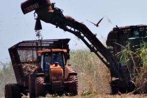 Senar/MS: programa especial prepara jovens de Sonora para mercado da mecanização agrícola