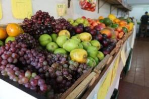 Na Frutaria Pague Pouco você encontra frutas, legumes e verduras fresquinhas todos os dias