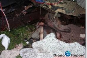 Acidente com vítima fatal na MS-157, envolvendo 3 carretas (veja fotos)