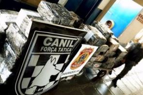 4,7 toneladas de drogas são tiradas de circulação pela Policia Militar na região de Dourados