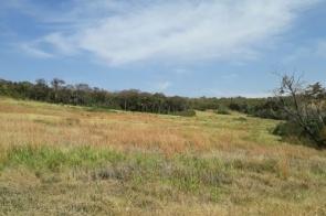 Fazendeiro desmata 144 hectares de vegetação e é multado em R$ 115 mil