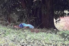 Jovem é encontrado morto no distrito de Montese