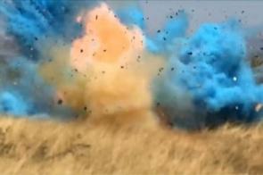 Evento para revelar sexo de bebê termina em incêndio florestal; veja vídeo