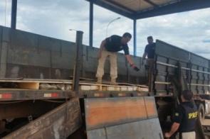 PRF apreende 1,5 tonelada de maconha e 46kg de skunk no Sul do MS