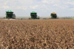 MS tem 12 cidades entre os maiores produtores do agronegócio brasileiro