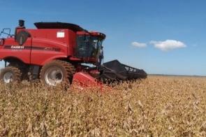 MS fecha safra com produção de 8,8 milhões de toneladas de soja