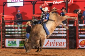 Itaporã terá o 1º Rodeio Itaporã Fest Bulls em Setembro