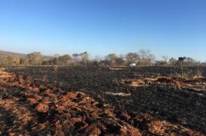 Homem é multado em quase R$ 160 mil por incêndio em área nativa