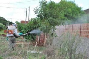 Dengue continua em alta com média de 17 novas confirmações por dia em Dourados