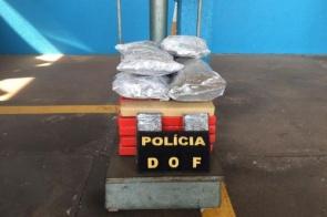 Mulher é presa em ônibus tentando levar droga até o Paraná