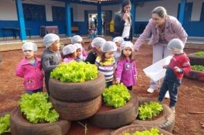 Alunos colhem frutos de projeto de horta agroecológica implantado em Douradina