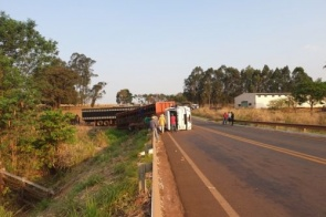 Caminhão boiadeiro tomba em rodovia e gado fica preso na carroceria