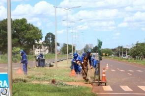 Com contratos vencidos, prefeitura suspende nova licitação para limpeza pública