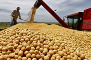 Atrasado pela estiagem, plantio da soja inicia no sul de MS, em Vicentina e Fátima do Sul