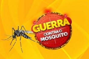 MS lança hoje campanha sobre doenças transmitidas pelo Aedes aegypti