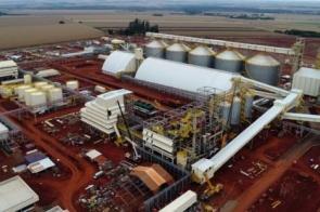 Complexo industrial da Coamo começa operar este mês em Dourados