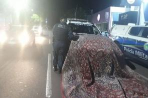 Sete são presos por furto de tapete avaliado em R$ 50 mil