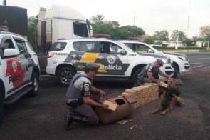 Cães farejam cilindros com 135 quilos de cocaína avaliados em R$ 1,3 milhão