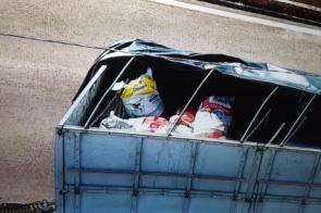 PRF apreende de 2 toneladas de agrotóxicos escondidos em carga de leite